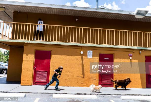 Living in an extended stay budget hotel because they cannot afford or find affordable housing Aja Mallow's son Brian Mallow runs their two dogs Simon...