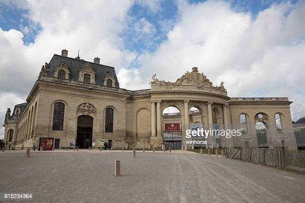 living museum of the horse in chantilly, france - oise stock pictures, royalty-free photos & images