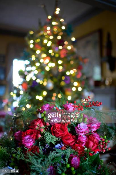 Living room floral arraignment in the home of former White House Floral Designer Laura Dowling for the Christmas issue photographed in Alexandria VA...