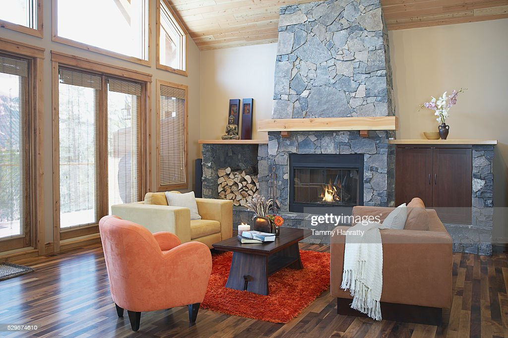 Living room in chalet : Photo