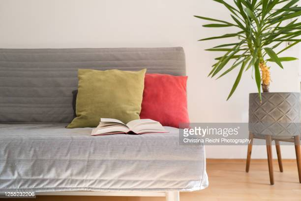 living room with couch - grey colour stock pictures, royalty-free photos & images