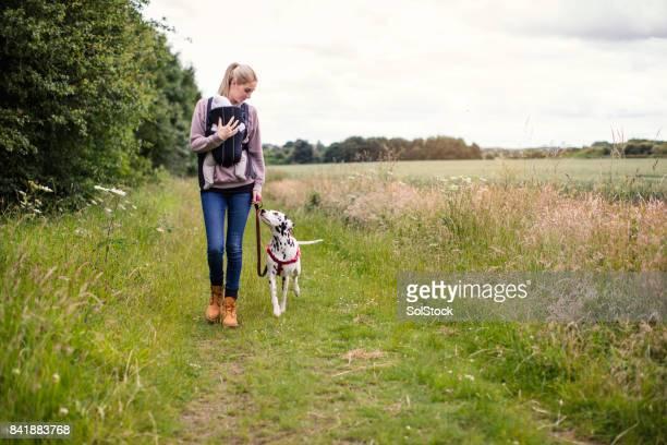 Leben mit Haustieren