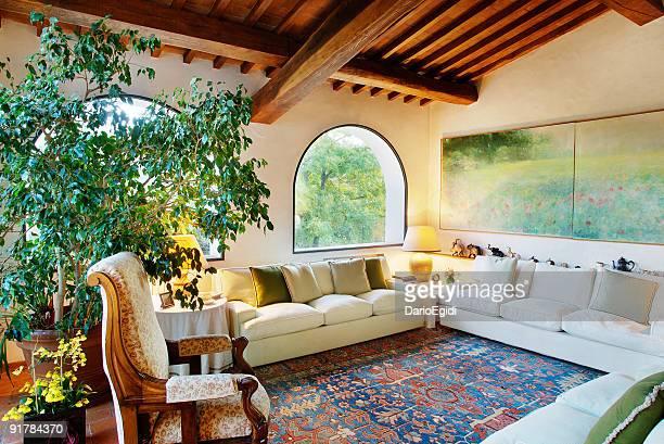 Wohnzimmer mit sofa, Teppich, Pflanzen und raftered Decke