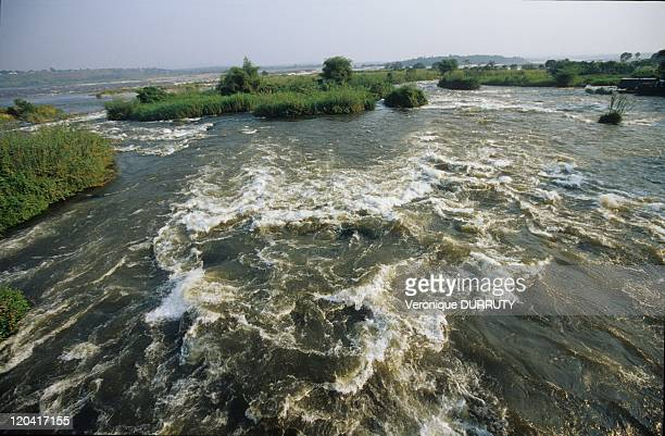 Livingstone Falls Near Brazzaville River, Pool In Congo - Livingstone Falls, named for the explorer David Livingstone after, are a series of rapids...