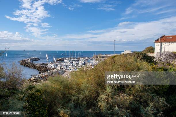 livorno marina with sailingboats on a clear blue sunny day - finn bjurvoll stock pictures, royalty-free photos & images