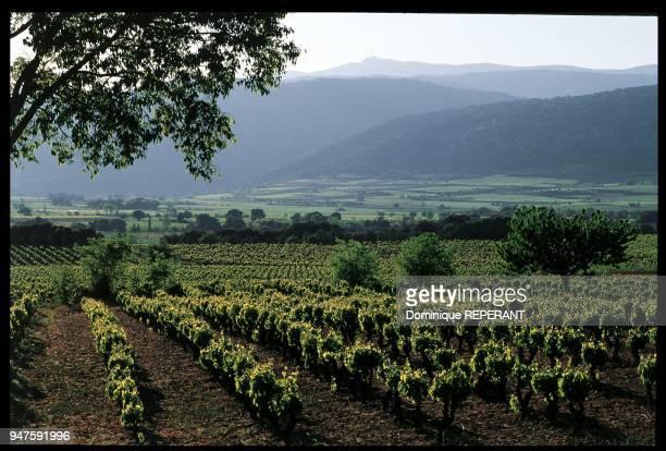 Livre Douce France p184/185 A l'arrièreplan on peut voir l'entrée de la vallée de l'Hérault Livre Douce France p184/185 A l'arrièreplan on peut voir...