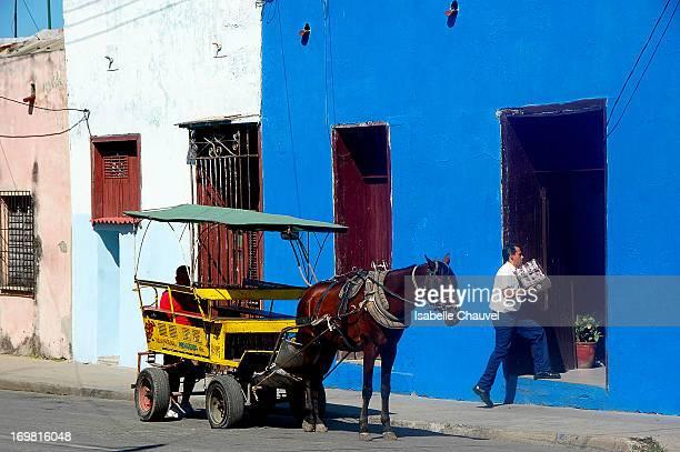 CONTENT] Livreur avec une cariole avec cheval dans un rue de cienfuegos à cuba delivery man with horse in a little street of cienfuegos in cuba