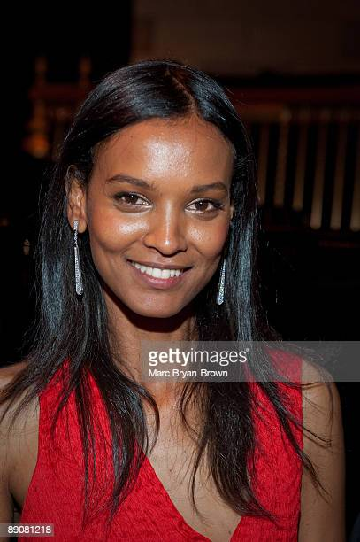 Liya Kebede attends the Gordon Parks Foundation's Celebrating Spring fashion awards gala at Gotham Hall on June 2 2009 in New York City
