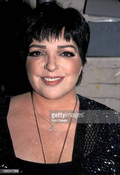 Liza Minnelli during 14th Annual MAC Awards at Town Hall in New York City, New York, United States.