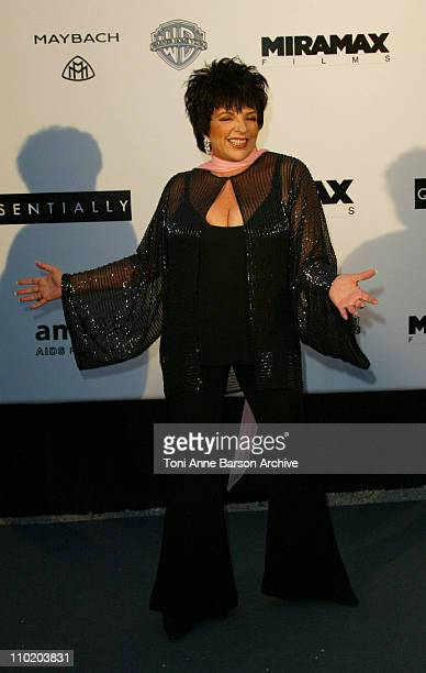 """Liza Minnelli during amfAR's """"Cinema Against AIDS Cannes"""" Benefit Sponsored by Miramax and Quintessentially - Arrivals at Moulin De Mougins in..."""