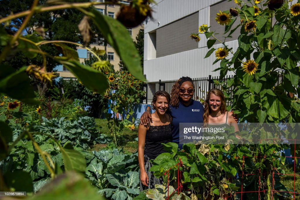 Lizzy Farrante, L, Cheryl Bell, C, and Izzy Moody stand for a portrait in the George Washington University urban garden on Wednesday, August 29, 2018, in Washington, DC. Students grow food in the garden that is donated to Miriam's Kitchen, which feeds meals to 4,000 homeless people each year. Farrante and Moody, both seniors at the university, are co-managers of the garden and Bell is the executive chef at Miriam's Kitchen.