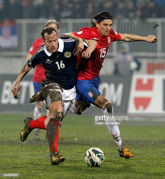 Ljubisa Fejsa of Serbia battles for the ball with Charlie Adam of Scotland during the FIFA 2014 World Cup Qualifier between Serbia and Scotland at...