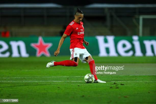 Ljubomir Fejsa from SL Benfica during the match between SL Benfica v Lyon for the International Champions Cup Eusebio Cup 2018 at Estadio do Algarve...