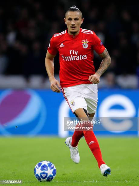 Ljubomir Fejsa of Benfica during the UEFA Champions League match between Ajax v Benfica at the Johan Cruijff Arena on October 23 2018 in Amsterdam...