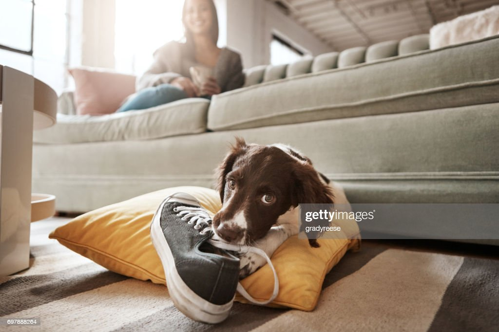 I'll teach her not to put on shoes and leave : Stock Photo