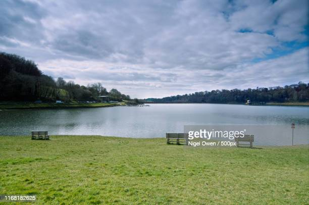 llandegfedd - nigel owen stock pictures, royalty-free photos & images