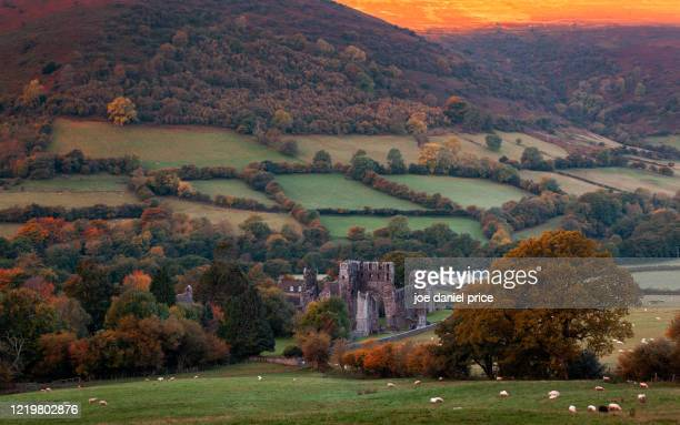 llanthony abbey, vale of ewyas, llanthony, abergavenny, brecon beacons, wales - south wales stock pictures, royalty-free photos & images