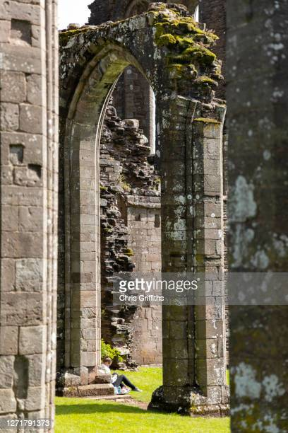 llanthony priory, wales, uk - arch stock pictures, royalty-free photos & images
