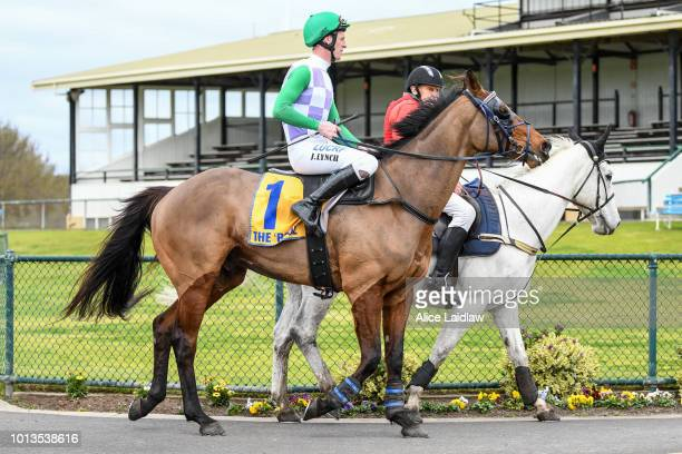 I'll'ava'alf ridden by Jarrod Lynch returns to scale after winning the Toot Traffic BM120 Steeplechase at Warrnambool Racecourse on August 09 2018 in...