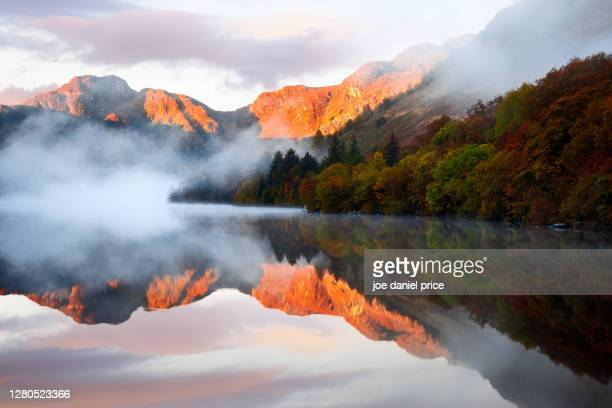 llyn crafnant, trefriw, snowdonia, wales - dawn stock pictures, royalty-free photos & images