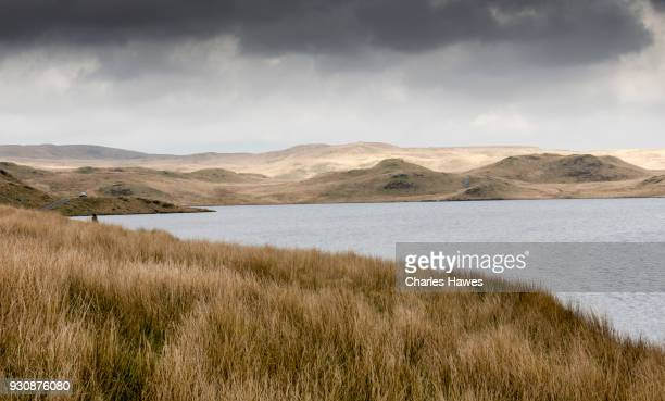 llyn Egnant, Ceredigion. The Cambrian Way, Wales, UK