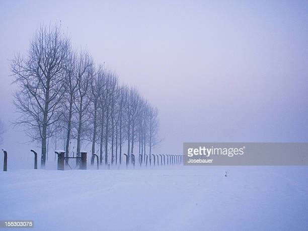 lo que se queda tras la niebla - auschwitz stock-fotos und bilder