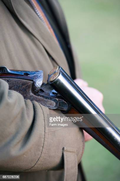 Loaded 12 bore shotgun broken and held in crook of arm at a pheasant shoot