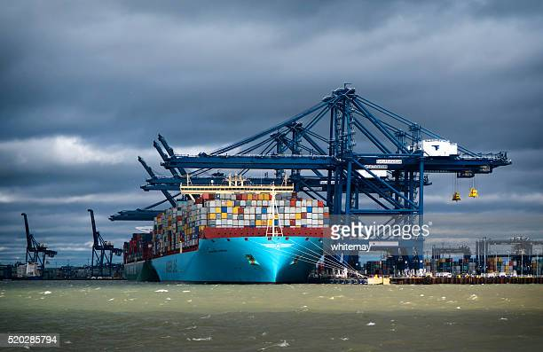 loaded container ships at felixstowe - suffolk england stock photos and pictures