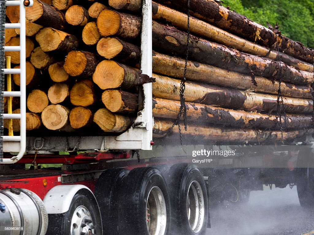 Loaded Log Truck Rural Road Port Angeles Washington State Close-up : Stock Photo