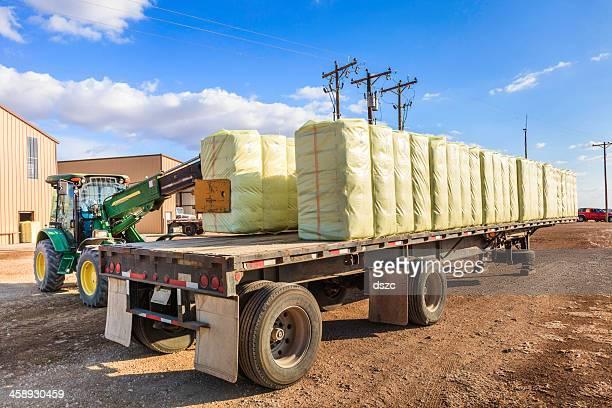 loader loads bales of cotton on flatbed trailer
