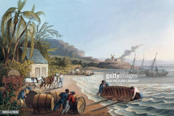 Loading barrels of rum and sugar at Antigua Antigua and Barbuda engraving by William Clark