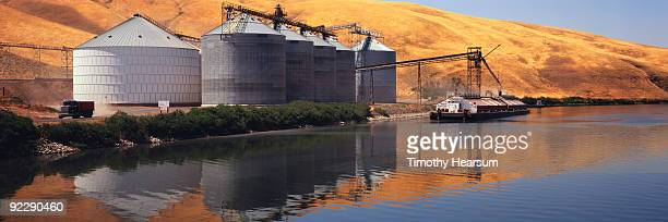 loading grain on barge on snake river - timothy hearsum stock photos and pictures