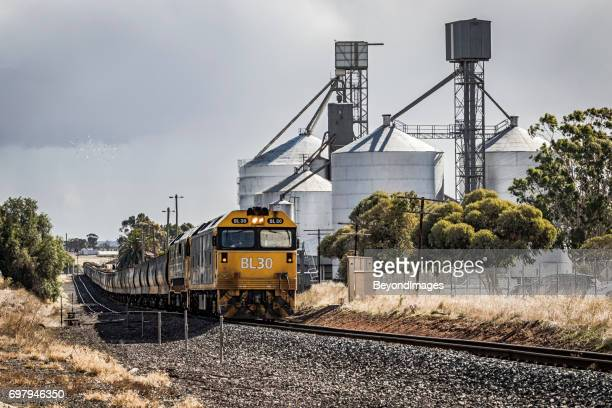 loading grain train under stormy skies in western victoria - cereal plant stock pictures, royalty-free photos & images