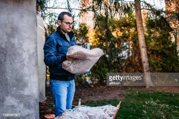 loading wheelbarrow with pellets - grânulo imagens e fotografias de stock