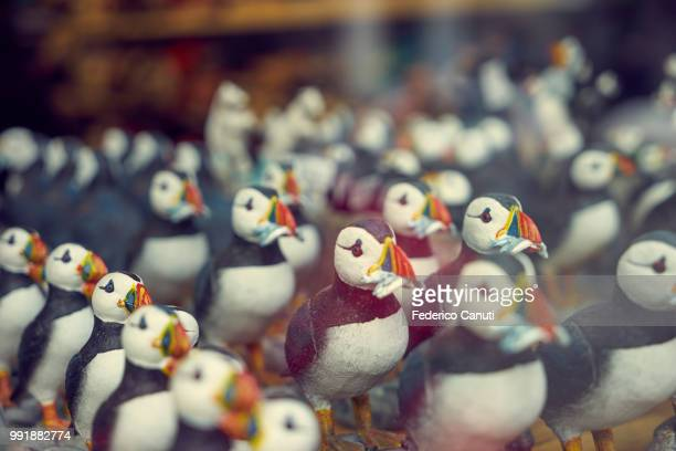 loads of puffins! - animal representation stock pictures, royalty-free photos & images