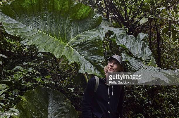Loan Male Traveller Walking & Exploring Nature