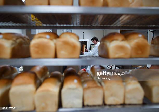 Loaves of bread sit on a rack as a laboratory technician carries out baking enzyme tests at the Royal DSM NV laboratory in Delft Netherlands on...
