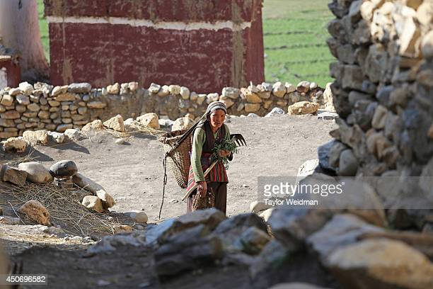 Loba woman returns from the fields after a day of work Dhe village has been facing an acute water shortage for more than a decade with fully half of...