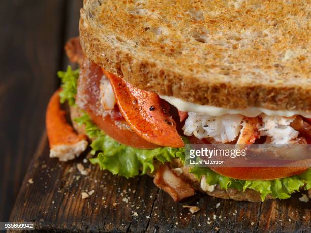 lobster, blt sandwich - comfort food stock pictures, royalty-free photos & images