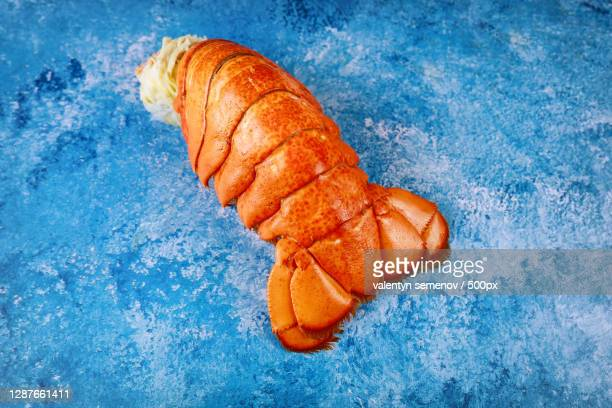 lobster dinner with boiled lobster tail - red lobster restaurant stock pictures, royalty-free photos & images