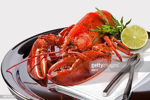 Un plat de homard