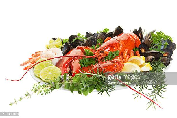 lobster dish - red lobster restaurant stock pictures, royalty-free photos & images