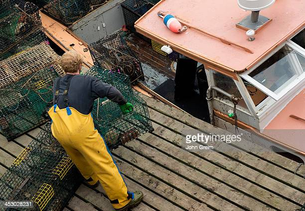 Lobster fisherman unloads his boat at the dock
