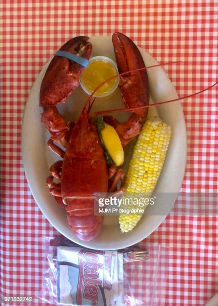 Lobster in Cape Cod