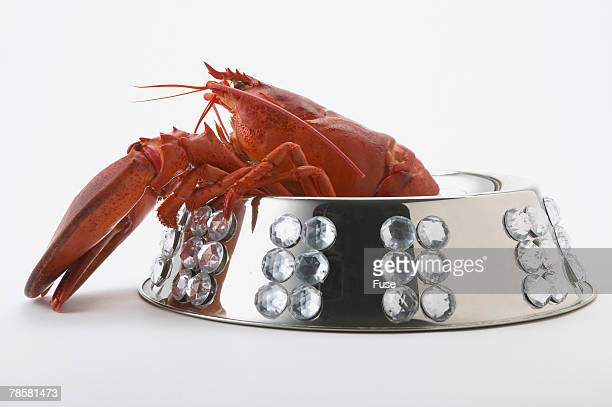 Lobster in Rhinestone Studded Silver Pet Dish