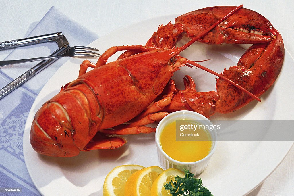 Lobster on plate : Stockfoto