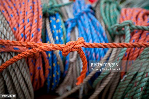 Lobster Red Ropes