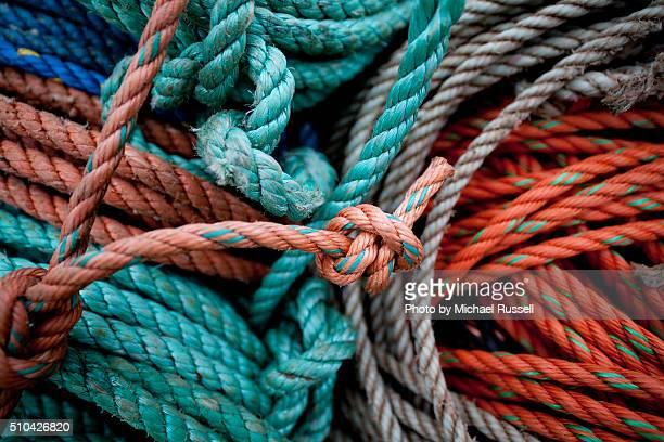 Lobster Ropes 4