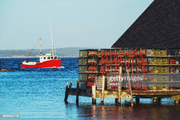 lobster season - lobster fishing stock photos and pictures