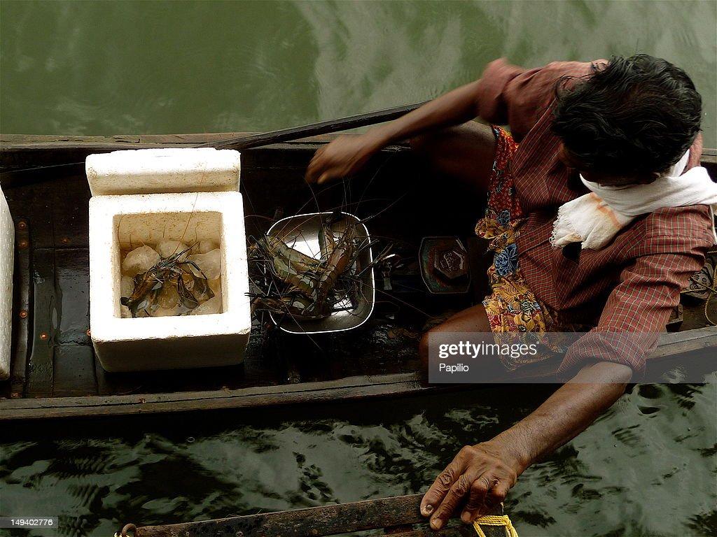 Lobster seller on boat : Stock Photo